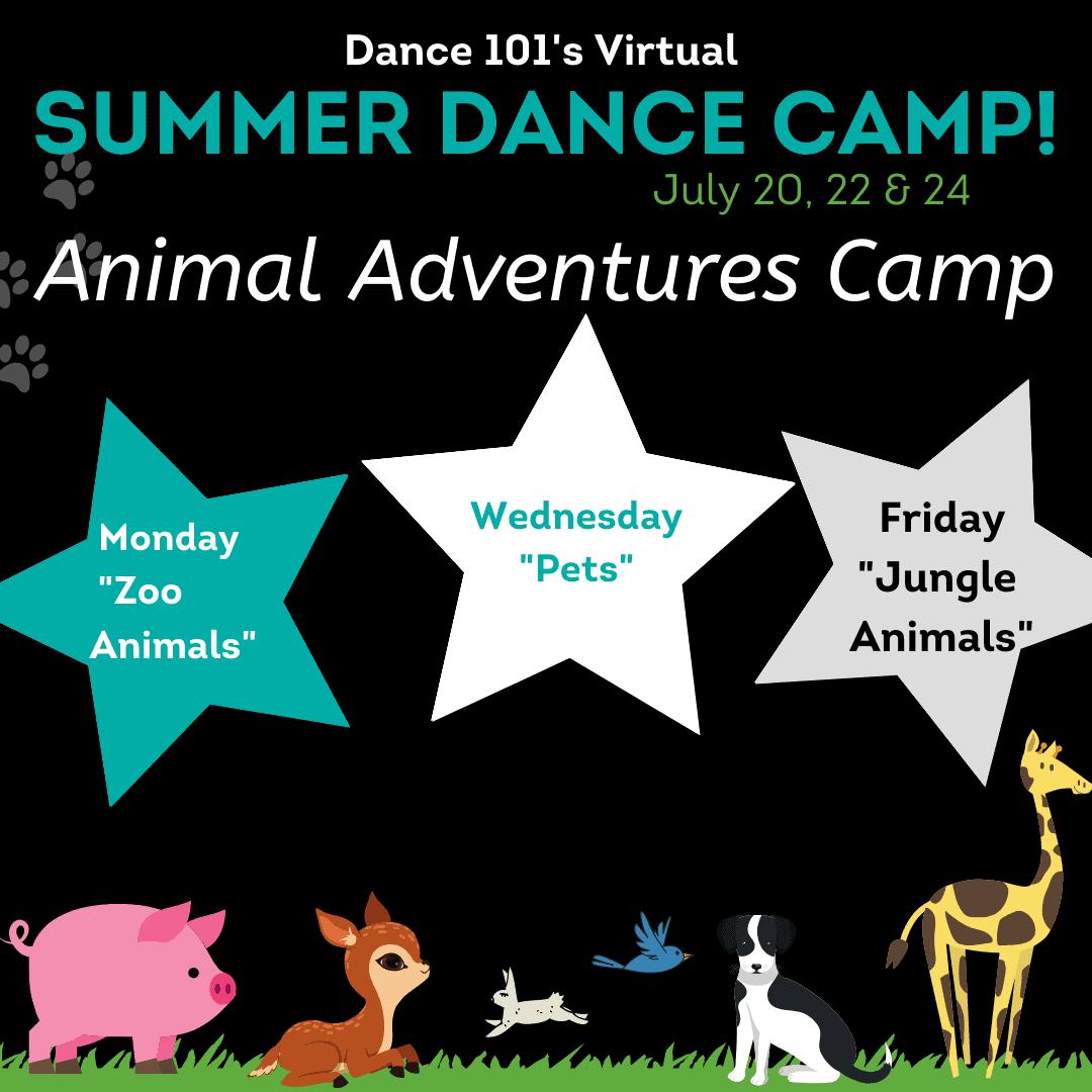 D101 Virtual Animals Adventure Camp